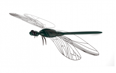 dragonfly_3dsimo-380x240
