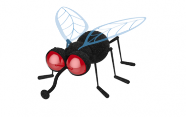 fly-380x240