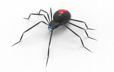 spider-380x240